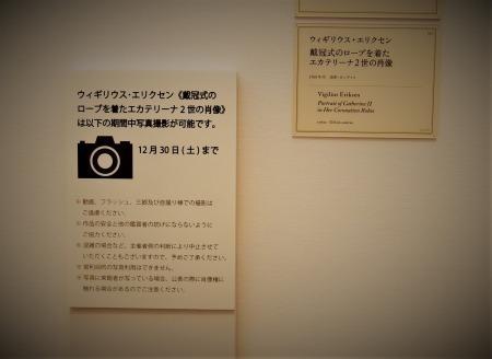 IMGP2585-1.jpg